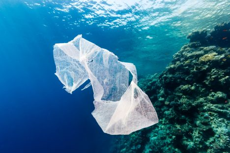 How Much Plastic is in the World's Oceans?