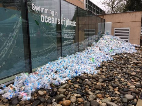 19 Aquariums Pledge to Fight Plastic Pollution, Ban Single-Use Plastic Bags and Straws